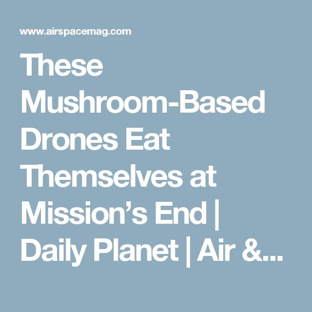 These Mushroom-Based Drones Eat Themselves at Mission's End      |     Daily Planet | Air & Space Magazine