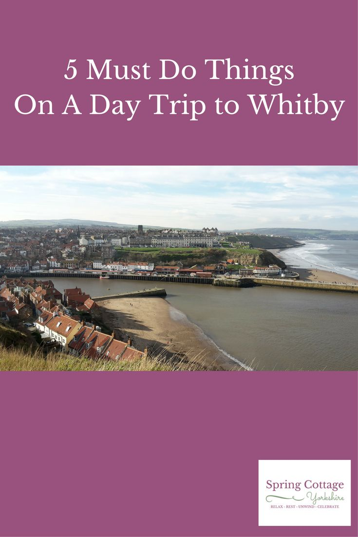 5 Must Do Things On A Day Trip To Whitby Are you planning a day trip to Whitby? I know most of Spring Cottage's guests visit Whitby.  If you intend to visit too, I hope this article will help you.  I want you to experience and see as much of Whitby as possible but with a plan.  This means you're not tearing around the town like a mad thing. Karen