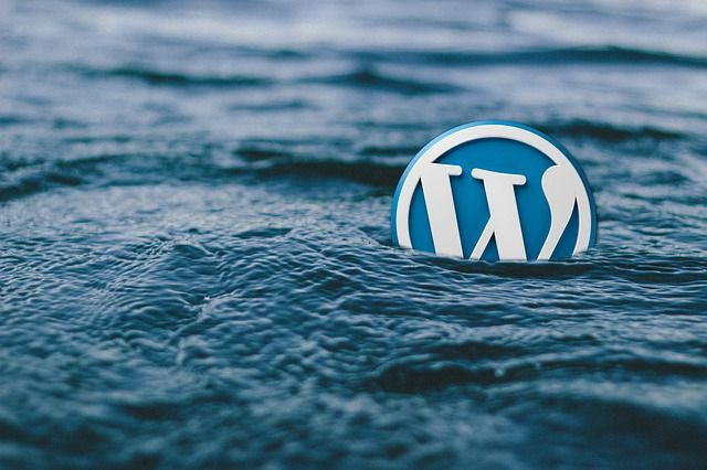 MK TechSoft provide training in wordpress that has many features including a plug-in architecture and a template system.