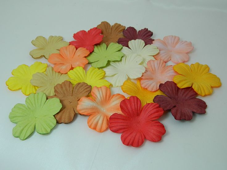 Summer Blooms 45mm Earth Colours (20pk)