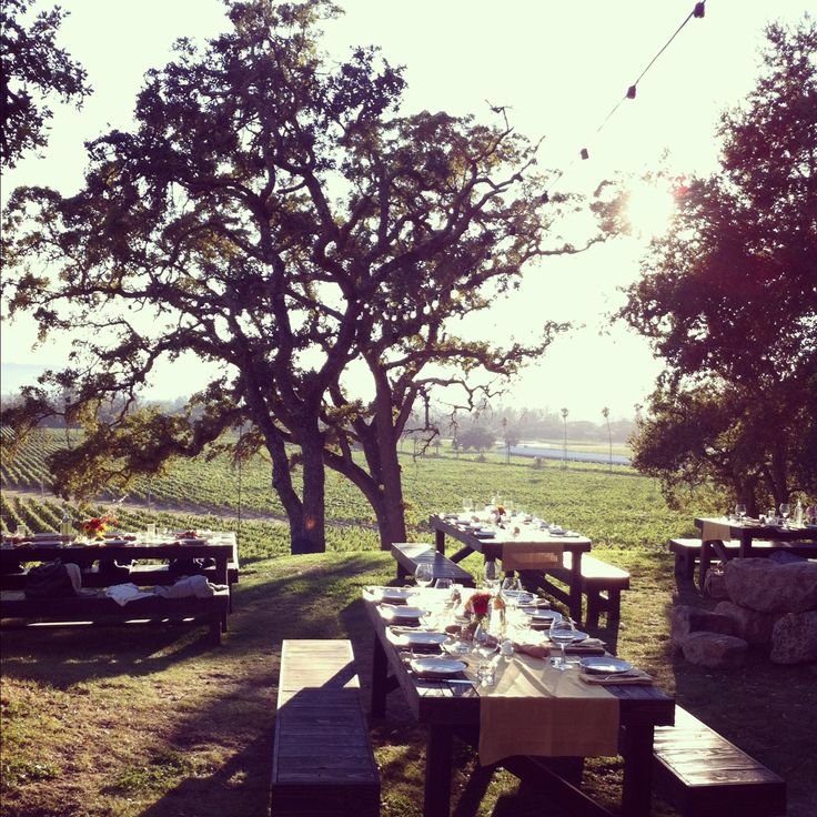 Sonoma wine tasting and end with picnic at scribe winery. sonoma. If you're fancy, spend the night glamping!