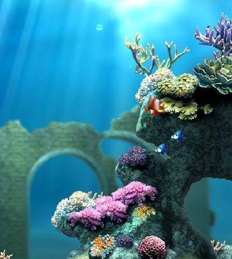 Macera oyunları, Balıkları Ye oyununda başarılar. http://www.korkuncoyunlar.gen.tr/macera-oyunlari/baliklari-ye.html
