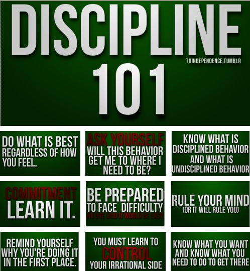 What are the benefits of discipline and consequences of not having discipline?