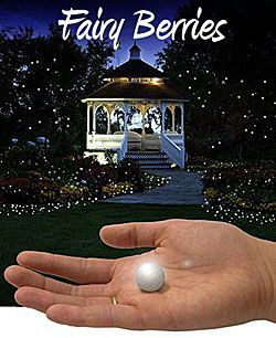 """""""Fairy Berries"""" are glowing white LED balls to place anywhere in your garden for your next party or event. Place on the lawn, in the garden, hang from your trees or gazebo. Measuring .75 inch in diameter they produce a moving firefly or fairy light effect that is so unique. The water resistant design lets you place them in your pond, pool or floating centerpieces. WANT."""