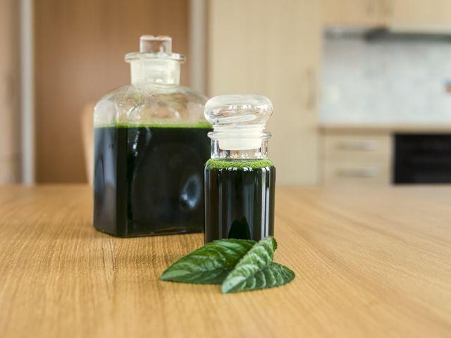 Aromatische Schokominze. Erst im Garten, dann im Glas.