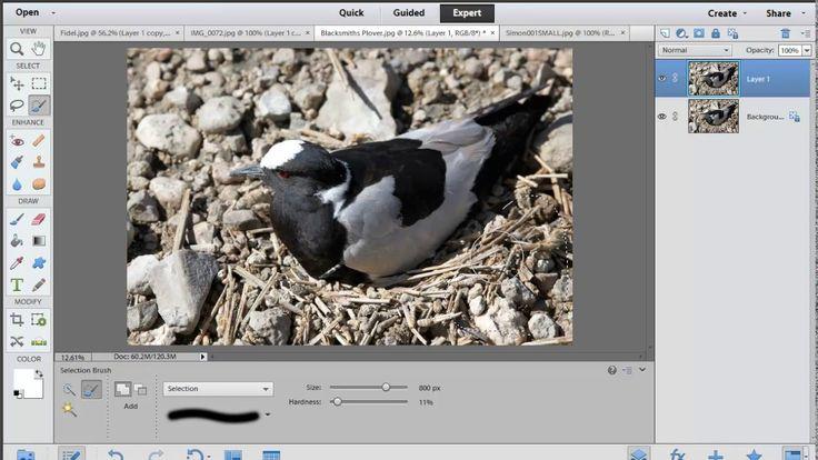 Photoshop Elements: Retouching Basics part#2