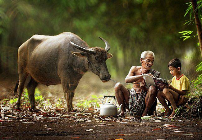 A vida é bela nas aldeias da Indonésia | Confira 20 fotos capturando a vida dos moradores