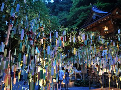 Tanzaku papers hanging on bamboo trees with wishes during the romantic Tanabata festival in Japan
