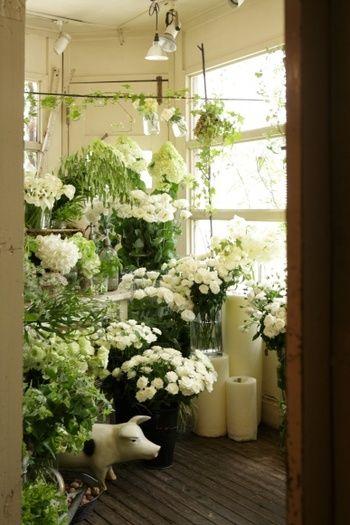 日本の有名なフラワーコーディネーターのひとりでもある高橋郁代さんのお店Le Veseve(ル・ベスベ)は、多種多様の草花、カラーを取り入れた、エレガント且つ華やかなフラワーアレンジメントが特徴のショップです。