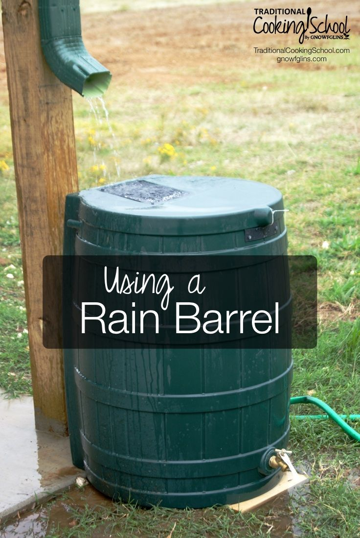 Using a Rain Barrel | Rain barrels help you take that extra step toward self-sufficiency and sustainability, plus they reduce your water bill. Here are 2 cautions to keep in mind, plus 6 things to consider when shopping for one. | TraditionalCookingSchool.com