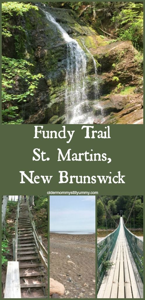 Day Tripping on the Fundy Trail, N.B., Canada - Older Mommy Still Yummy ~ We recently visited the breathtaking Fundy Trail which is located in southern New Brunswick, Canada and is part of the Trans Canada Trail system.
