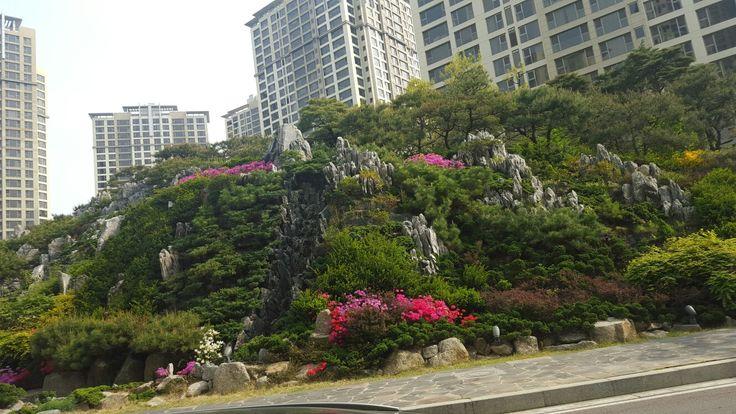 Apartment in Seoul Korea.