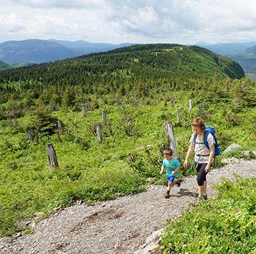 5 stratégies pour des randonnées en famille réussies