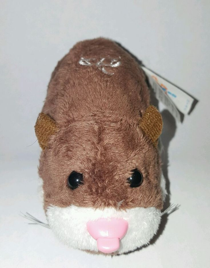 Zhu Zhu Pet Hamster Scoodles Brown White Acorn With Name Tag Tested And Working Hamsters As Pets Hamster Pets