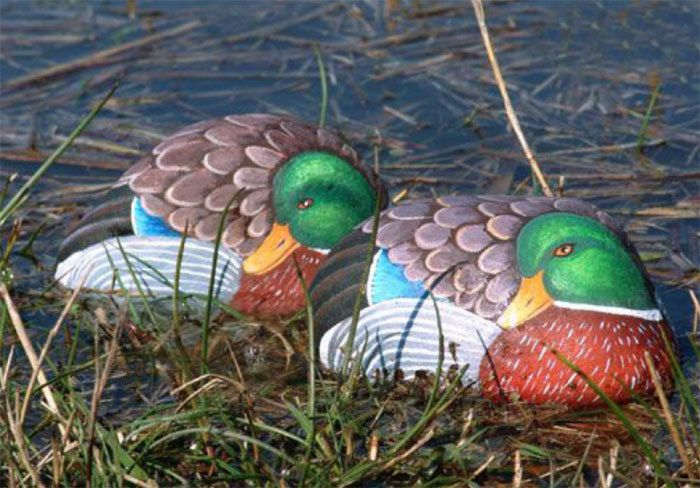 Rock Painting Tutorial - How to paint a mallard duck on rock
