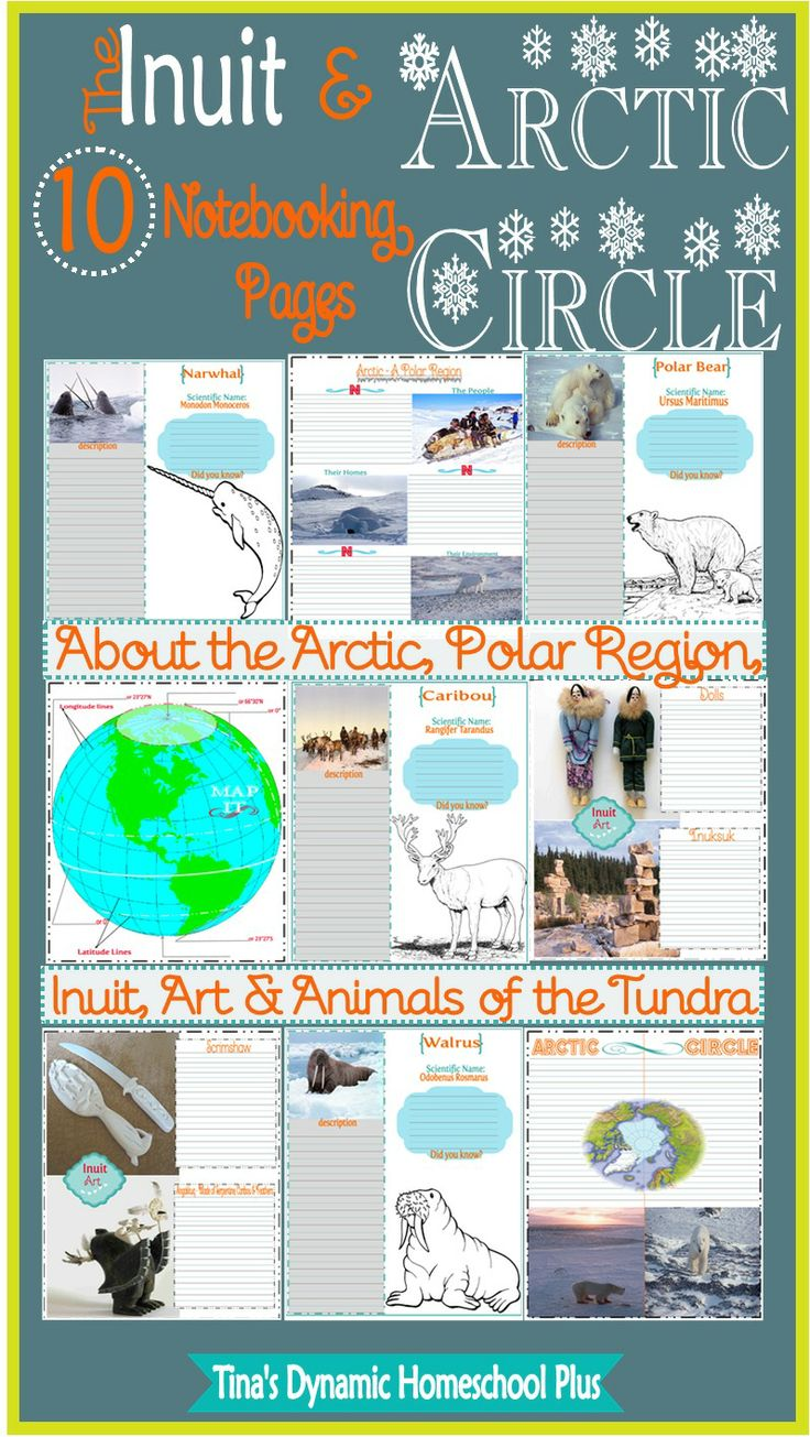 Free The Inuit/ Arctic Notebooking Pages for a homeschool unit study. Grab the free lapbook too.