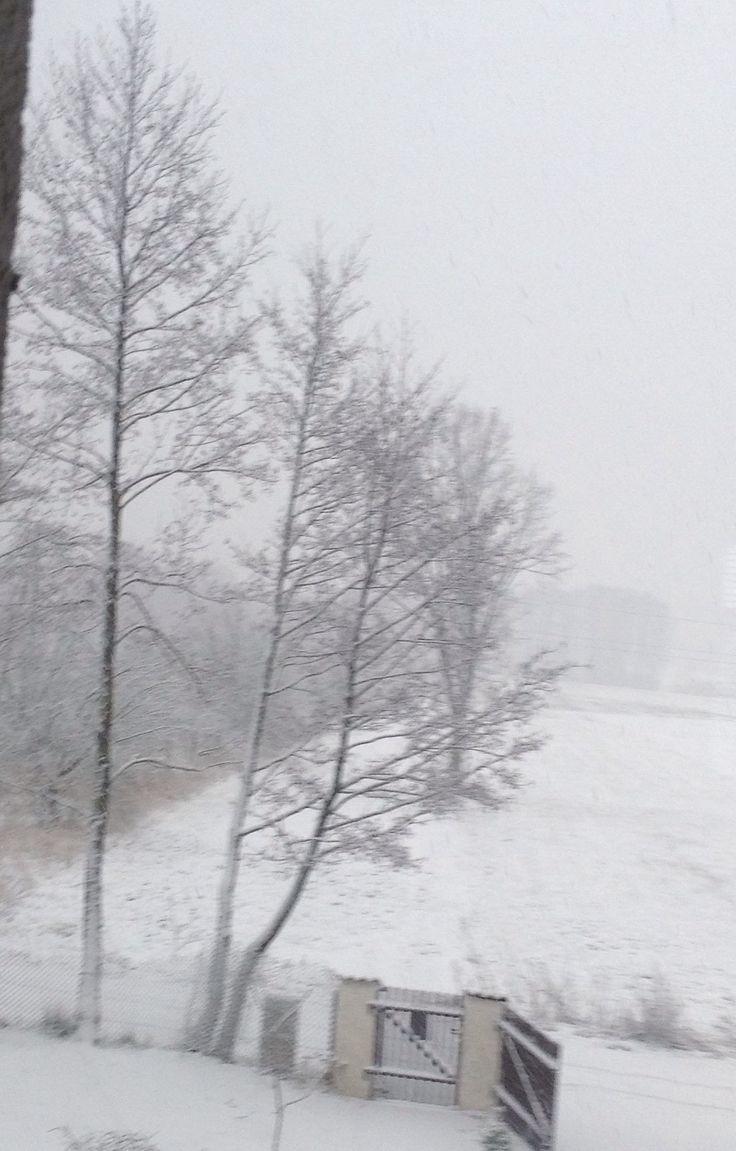 "Krajobraz ""zima"""