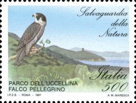 """1991 - """"Salvaguardia della natura"""": Falco Pellegrino e Parco dell'Uccellina (Toscana)"""