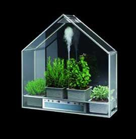 17 best images about small greenhouse ideas on for How to make a small indoor greenhouse