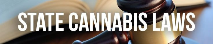 Federal Cannabis Law Hinders Scientific Research Efforts Study Finds
