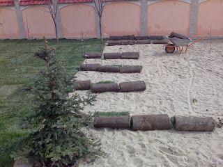 Grădinărit, horticultură și spații verzi - Gardening, horticulture and landscaping.: Grass rolls - English