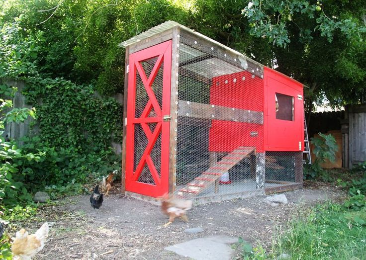 Diy chicken coop for the hubby to make pinterest for Modern chicken coop
