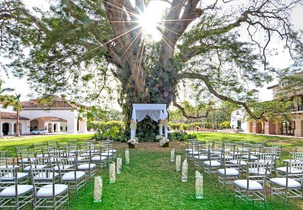 Marry under the famous Corotu Tree in the heart of the JW Marriott.  JW Marriott Panama Golf and Beach Resort.