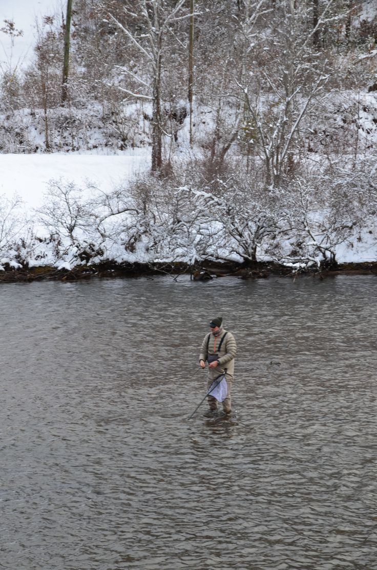 55 best images about fly fishing on pinterest for Taylor fly fishing