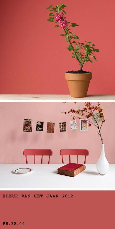 Color of the year 2012 by Flexa - No wonder I'm seeing this color in European magazines. Flexa is a European Paint.