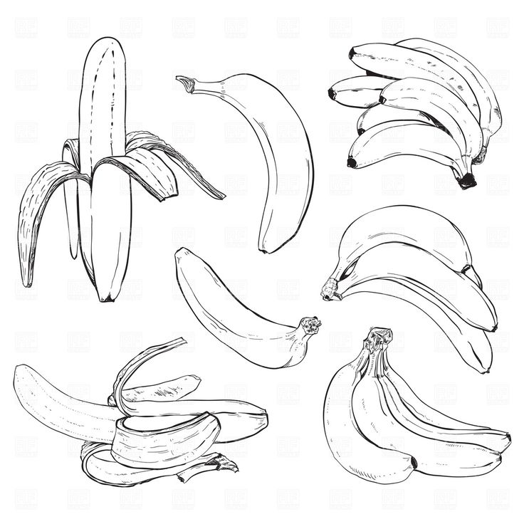 Free Banana Apple Tree Clipart