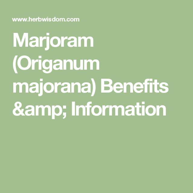Marjoram (Origanum majorana) Benefits & Information