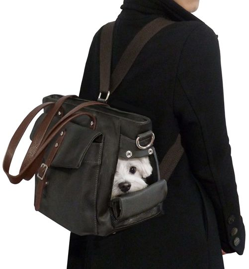 Small Dog Backpack Carrier Bag by MICRO POOCH™ -, マルチーズ チワワ ドッグキャリー, сумка для собак.