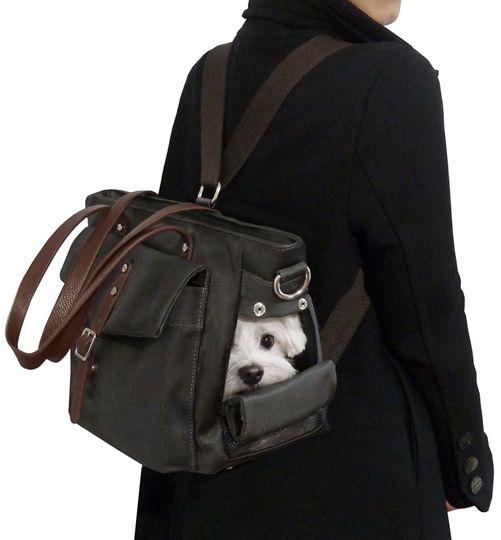 Small Dog Backpack Carrier Bag by MICRO POOCH™ -, マルチーズ チワワ ドッグキャリー, сумка для собак.