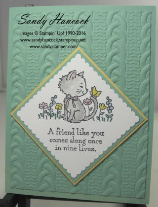 Pretty Kitty with the Cable Knit Dynamic Embossing Folder                                                                                                                                                                                 More