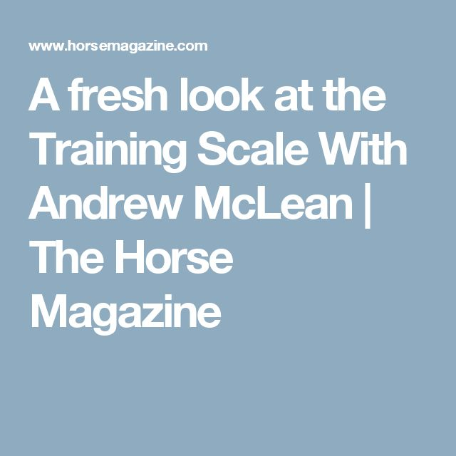 A fresh look at the  Training Scale  With Andrew McLean | The Horse Magazine