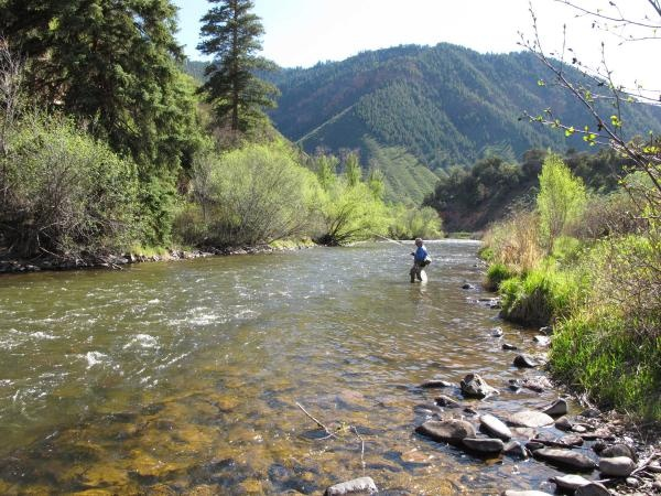 16 best frying pan river fly fishing images on pinterest for Best fly fishing in colorado
