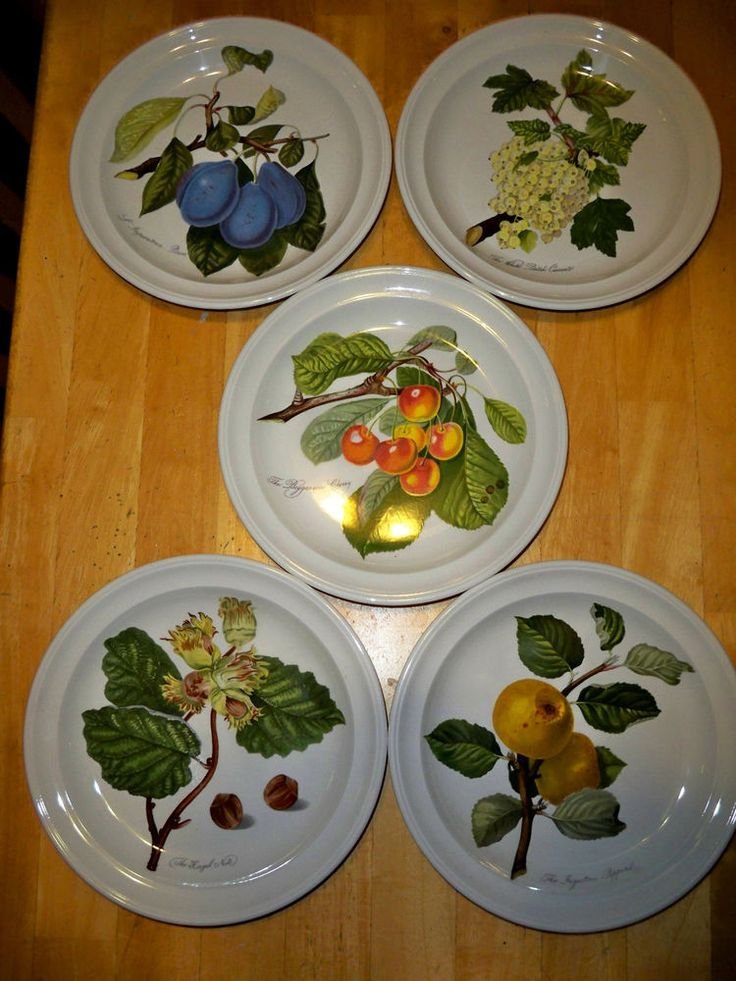 SET OF 5 PORTMEIRION POMONA  SALAD PLATES by Portmeirion - all older patterns, with the hazelnut in the bottom left a rare pattern to find