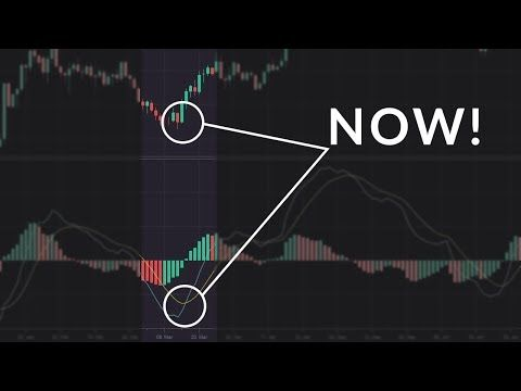 How and When to Exit a Trade: Take Profit and Stop Loss Levels