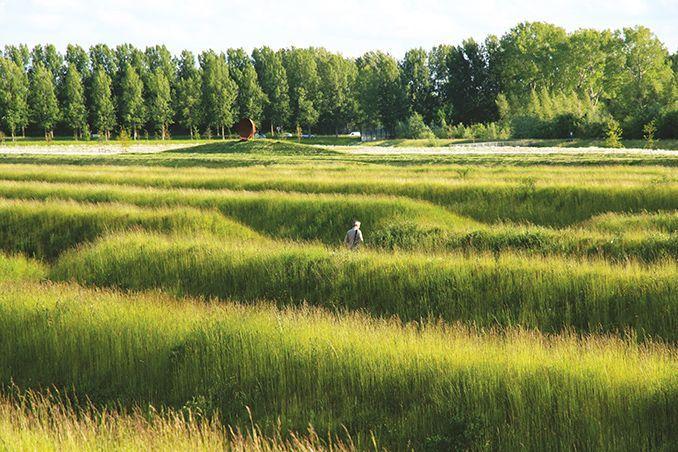 Buitenschot Park Haarlemmermeer The Netherlands H N S Landscape Architects Noise Miti Landscape Architect Landscape Design Landscape Architecture Design