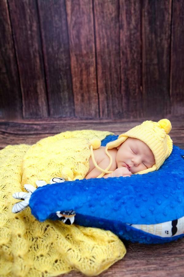 Blue hen pillow