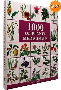 Frumoasa verde: Contraindicații ale unor plante, alimente și terapii naturiste