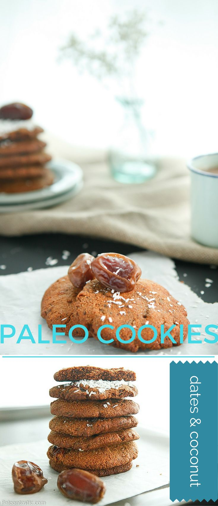 Chewy and delicious, sugar free, flourless paleo cookies