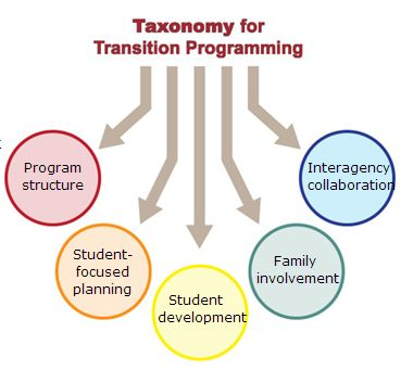 Best Transition Planning Images On   Assessment