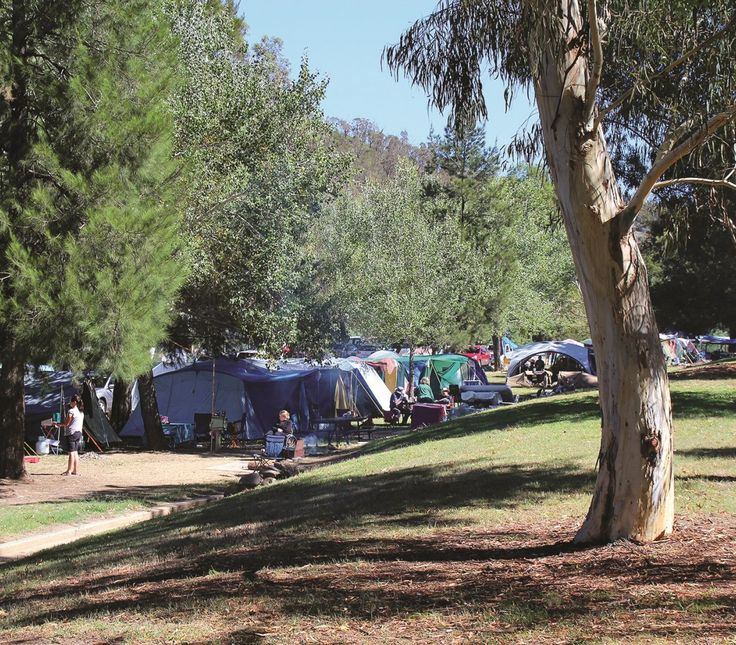 Cotter Campground. Photo courtesy of Mark Will //  The Cotter Campground is the most highly serviced bushland camping area in the ACT