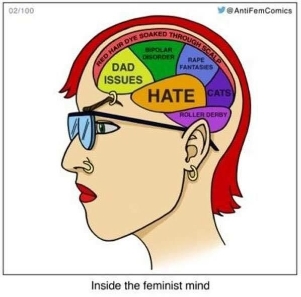 81 best images about Anti-Feminism/Anti-SJW on Pinterest Z Snap Formation