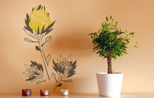 Artistic Proteas vinyl wall art from Fantastick Wall Décor (South Africa)  #proteas #southafrica