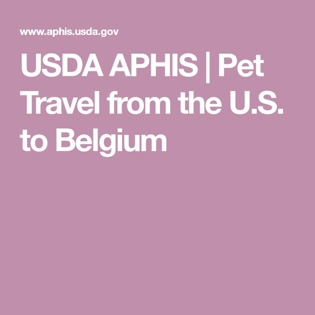 Usda Aphis Pet Travel From The U S To Belgium In 2020 Pet Travel Travel Pets