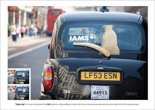 "Best Ads Ever On A Taxi - Iams: ""Happy Dog."""