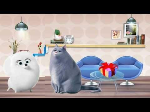 Весёлое поздравление от кошки Хлои Песня с днём рождения