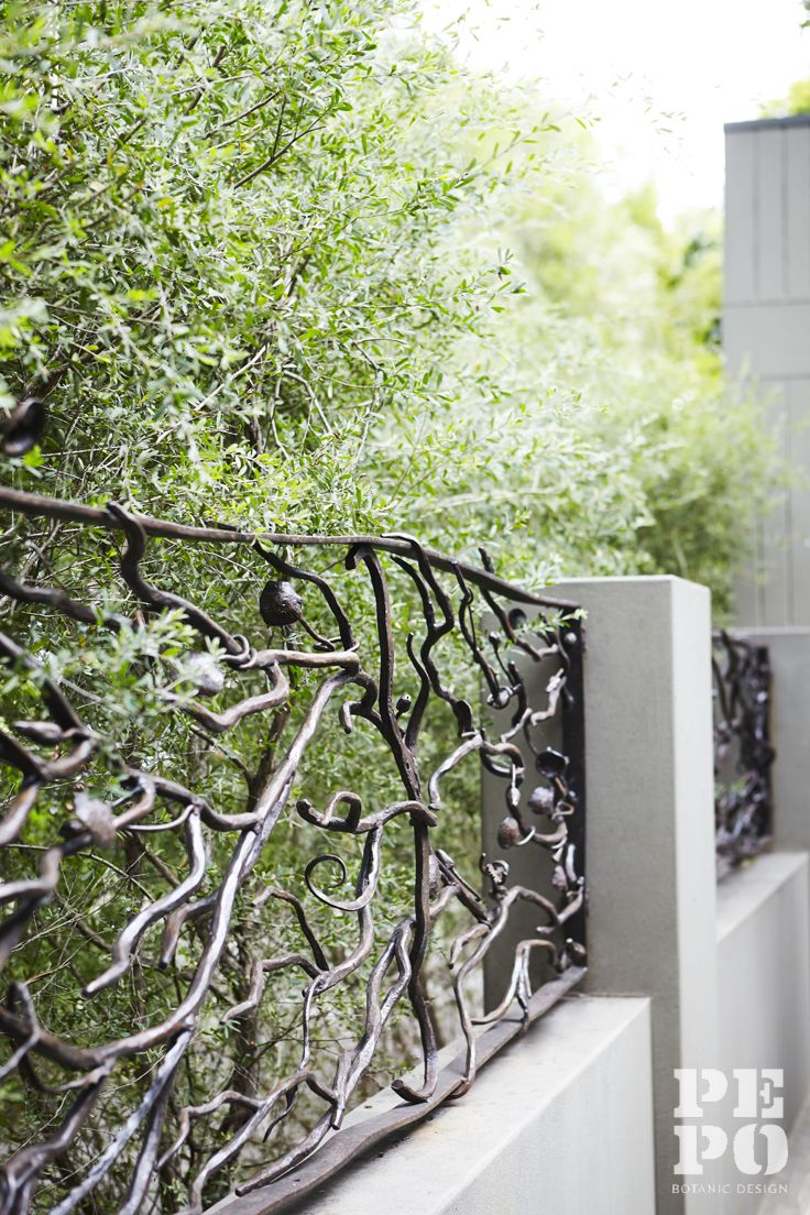 Sculptural boundary fence by Francesco Petrolo Parsley Bay, Eastern Suburbs By Pepo Botanic Design